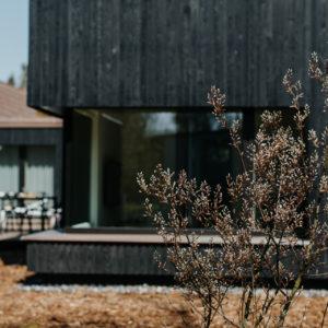Quartier Wieck Ferienhaus Ostsee Darss Wieck Fruehling 2019 Fotografie Elena Kraemer